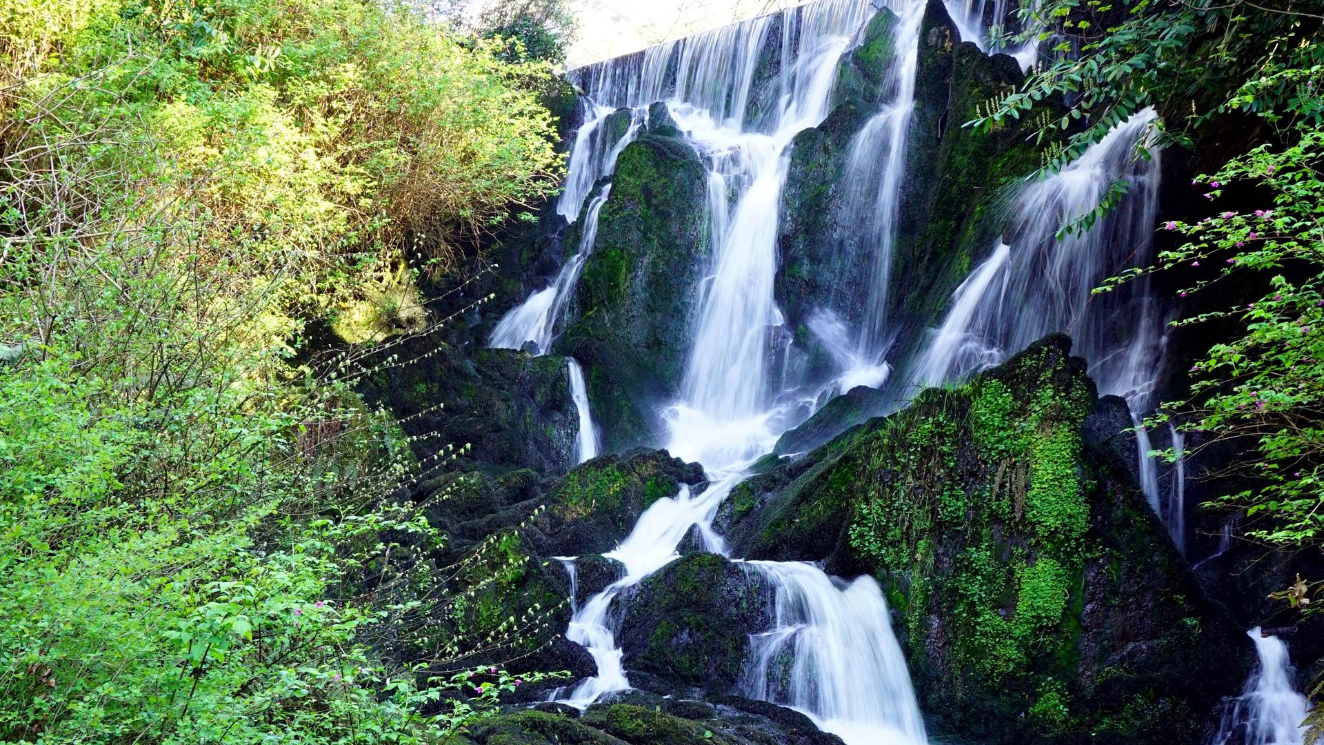 Crawfordsburn Waterfall